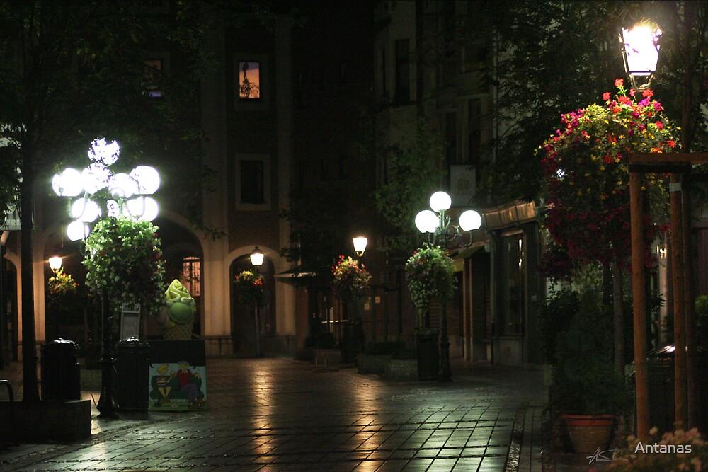 The Night street in Brussels (Belgium) by Antanas