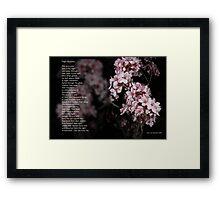 Night Blossoms (poster) Framed Print