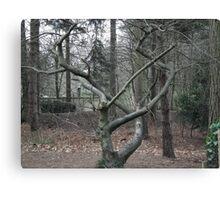 Tree nouveau Canvas Print