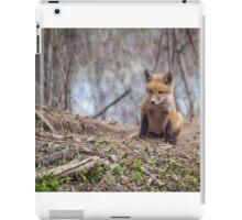 Kit Fox 2011-1 iPad Case/Skin