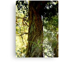 PARASITE STRANGULATION Canvas Print
