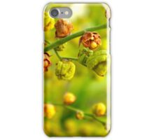 Foliage background iPhone Case/Skin