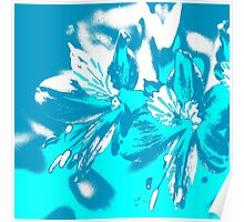 Homescape - blue and white orchid 2 Poster