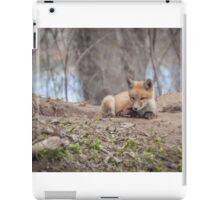 Kit Fox 2011-2   iPad Case/Skin