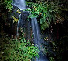 Fall in Eden by ccaetano