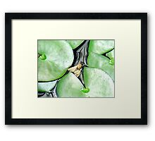You're just above water, but... Framed Print