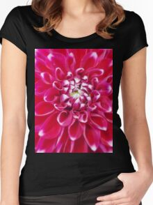 Soft red petals of Dahlia Women's Fitted Scoop T-Shirt