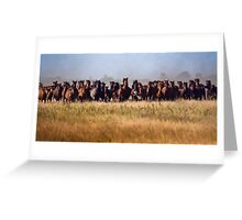 Flight Before the Wild Horses' Charge Greeting Card