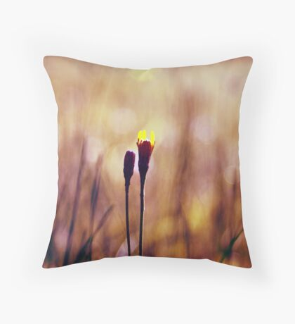 le centre d'attention 02 Throw Pillow