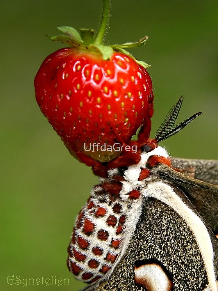 Eden's Fruit by UffdaGreg
