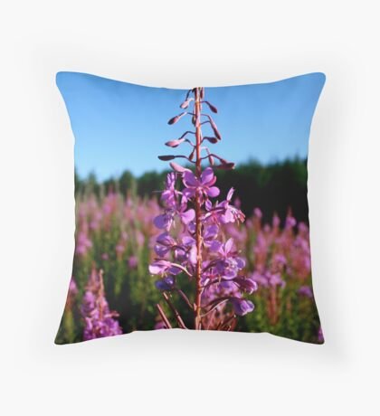 Fiery Fields Throw Pillow
