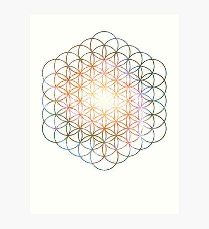 Pinwheel [Vibrant Double Flower] Flower of Life | Sacred Geometry Art Print