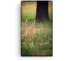 Meadow composition... Canvas Print