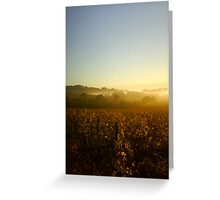 Golden Autumn Vines in the Misty Dawn Greeting Card
