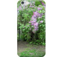 Lilacs Over the Gate iPhone Case/Skin
