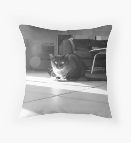 morning spot Throw Pillow