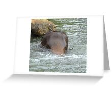 Are you still there!!! Greeting Card