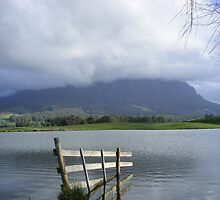 Mt Roland, from Paradise, Tasmania by gaylene