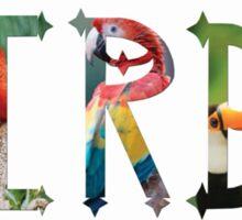 Dymond Speers BIRDS Sticker