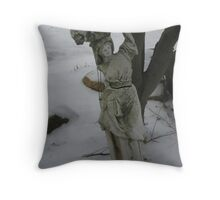 winter in Wadsworth Throw Pillow