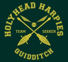 Holyhead Harpies - Team Seeker by quidditchleague