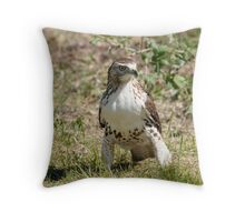 ultimate pose Throw Pillow