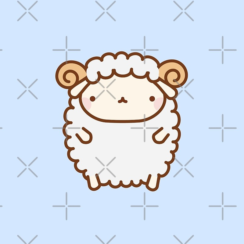 Cute sheep pictures