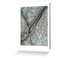Natures Belt-NMC challenge 3 Greeting Card