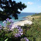 Bel-île-en-mer by lizzyforrester