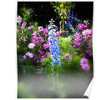 English Country Garden Poster