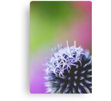 Spiked In The Corner Canvas Print