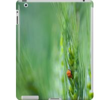 Ladybugs on Green Wheat iPad Case/Skin