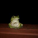 Green Tree Frog on Deck by James Troi