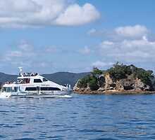 All aboard for a trip around the Bay of Islands........! by Roy  Massicks