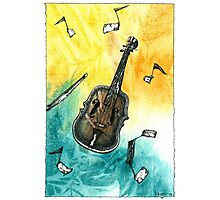Fiddle Notes Photographic Print