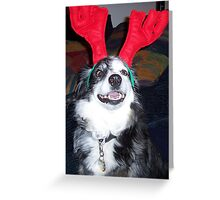 Yes I will be a reindeer........... Greeting Card