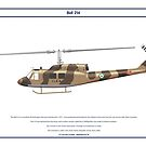 Bell 214 Iran 1 by Claveworks
