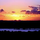 Noosa Sunset by Eliza Ferguson
