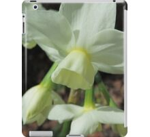 Creamy White and Lemon Daffodils iPad Case/Skin