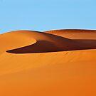 Desert sands #1 by Peter Hammer