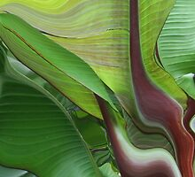 Flowing Plant by Linda Sannuti