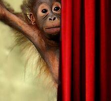 Baby Orangutan by Sue  Cullumber