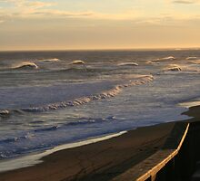 Logans Beach by Melani