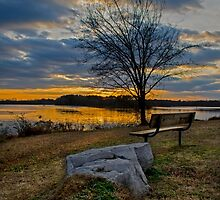 Come and have a seat by ctellis156