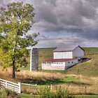 Tree And Barn by James Brotherton