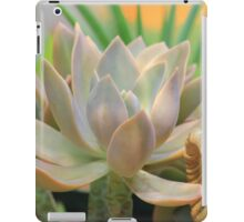 "Graptoveria ""Fred Ives"" succulent iPad Case/Skin"