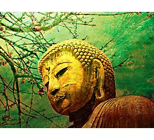 Buddha and Spring Blossoms Photographic Print