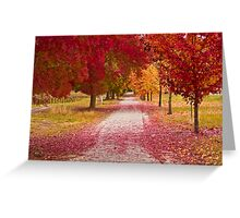 Bright Red Path  Greeting Card