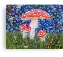Fly Amanita Canvas Print