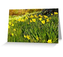 The Meadow Greeting Card